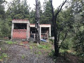 Av. Cerro Ventana 8900
