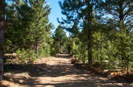 Camino del Valle del Chalhuaco P 1500
