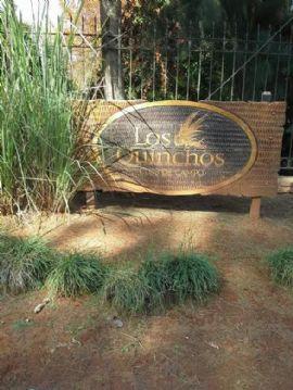 Los Quinchos