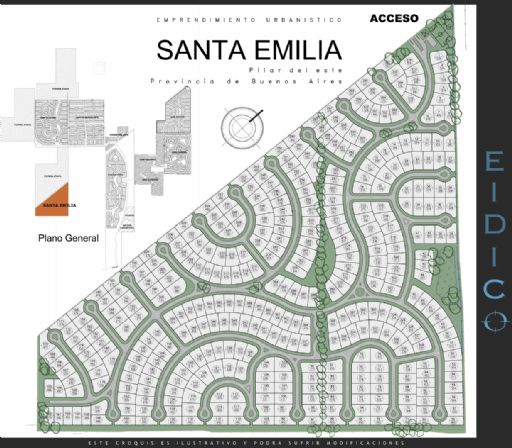 Santa Emilia 100