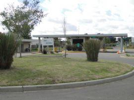 San Alfonso, Lote 200