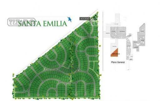 Santa Emilia, Lote 349